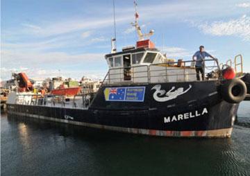Marella_2